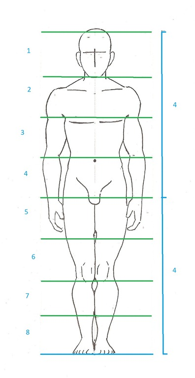 Dessin Corps Homme vos proportions dÉconnent ? voici les règles essentielles !