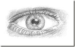 dessin yeux 8
