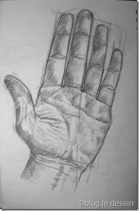 Des proportions utiles pour dessiner une main - Dessin de la main ...