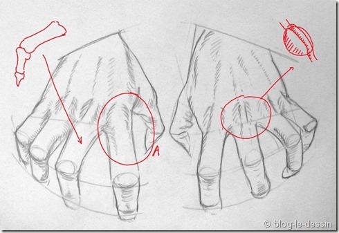 Connaissez vous ces tapes pour apprendre dessiner une main - Dessins mains ...