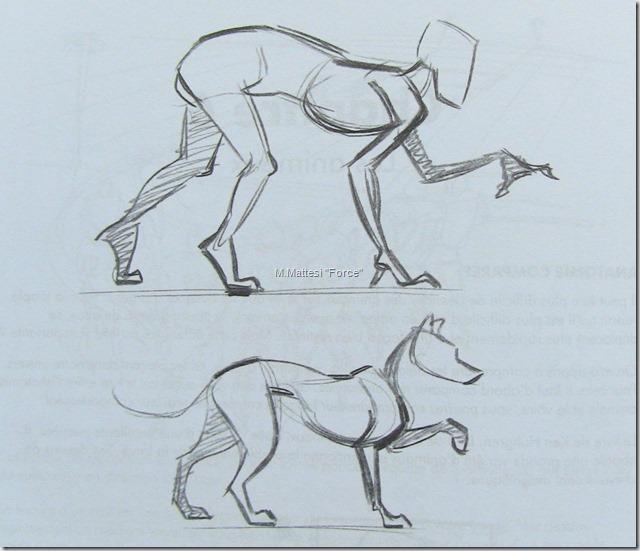 Apprendre dessiner un animal - Animal a dessiner ...