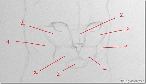 portrait chat 3 masses reliefs