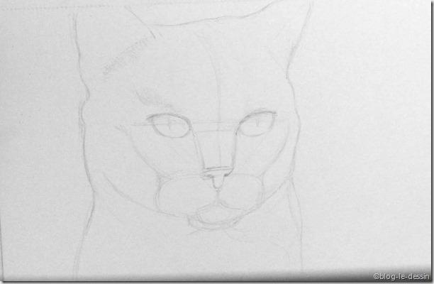 Dessin crayon - Portrait dessin facile ...
