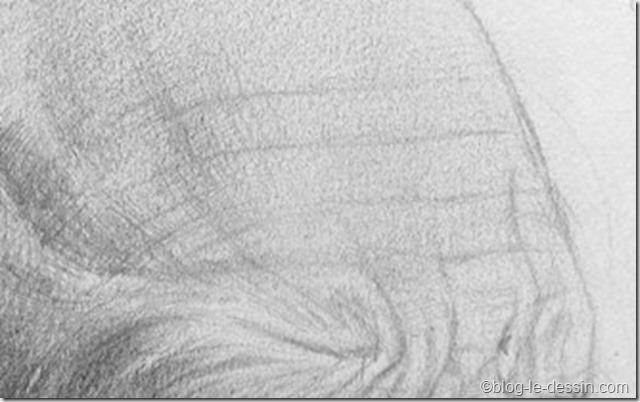 dessiner une peau réaliste11