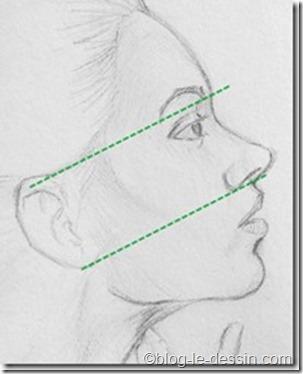 portrait femme profil_distances oreilles_thumb[4]
