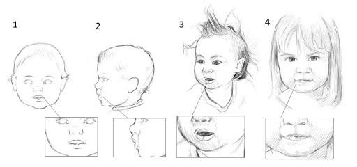 dessiner les joues d'un bébé