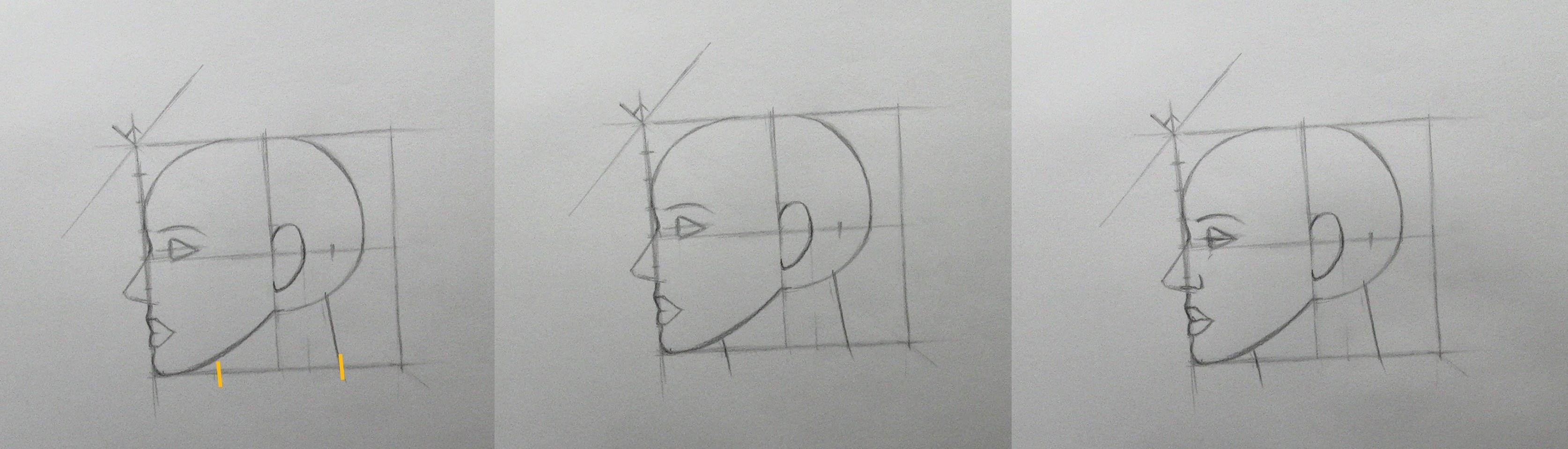 apprendre a dessiner etape par etape placer traits