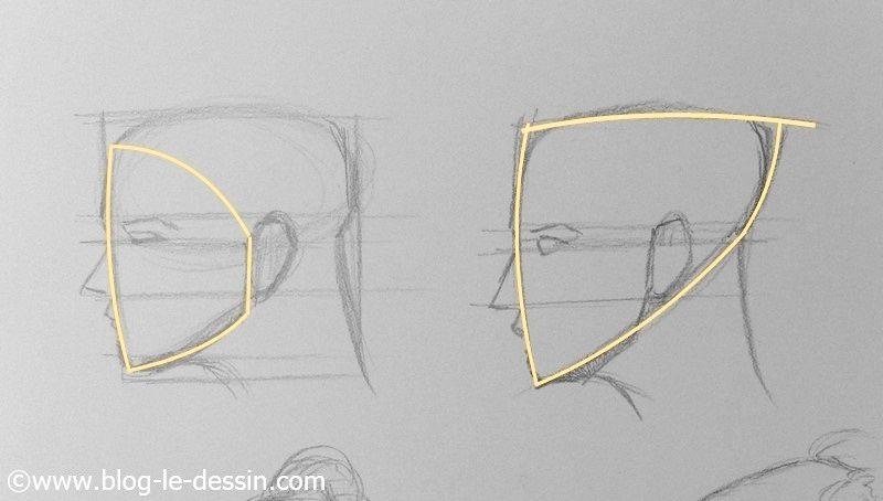 la forme en triangle du visage a dessiner