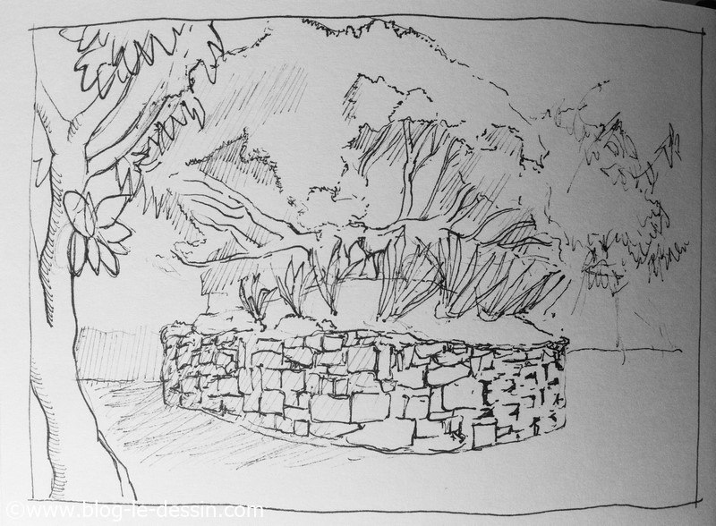dessiner arbres sur le vif