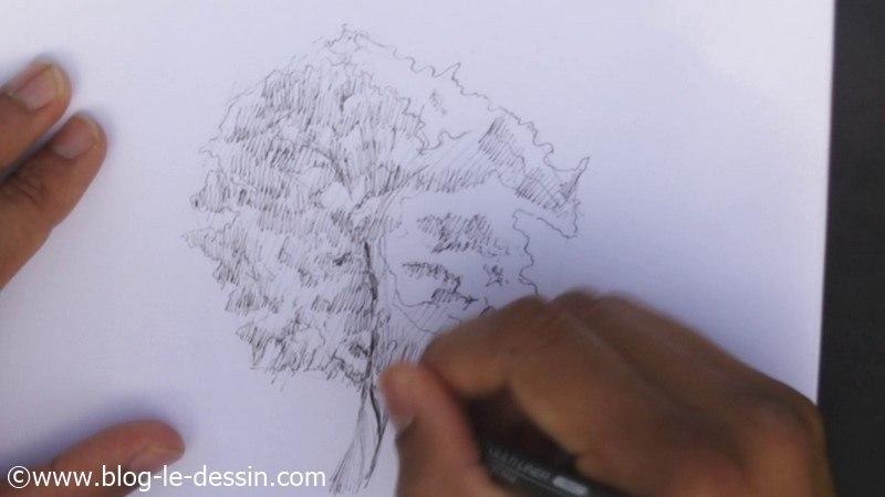 mise en volume du croquis arbre avec feutre encre