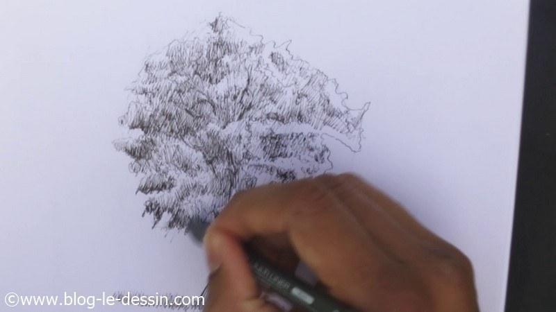 3 astuces pour dessiner un arbre blog le dessin. Black Bedroom Furniture Sets. Home Design Ideas