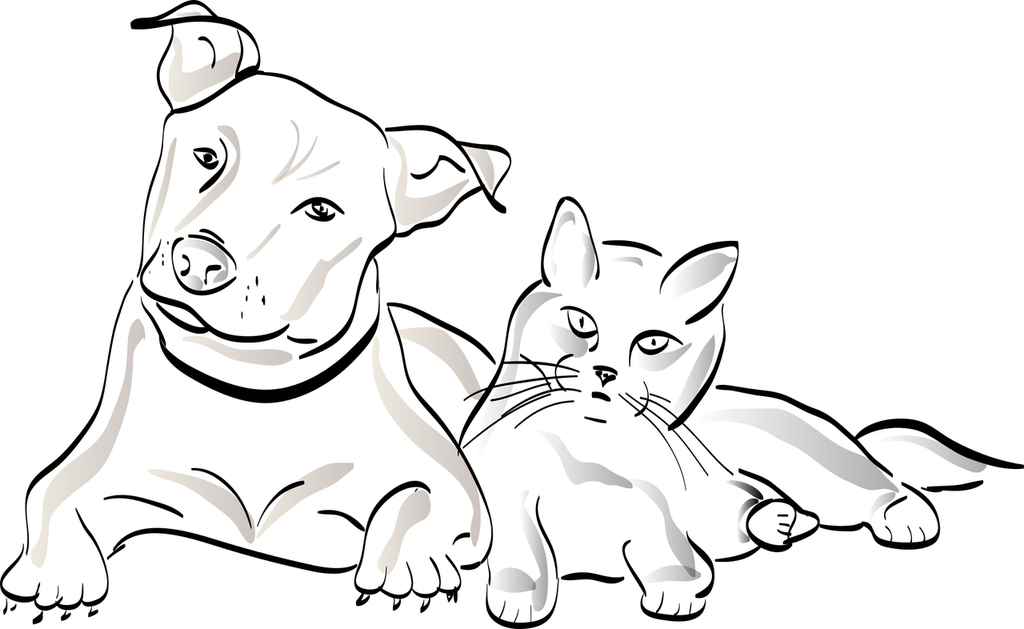 signification dessin animaux