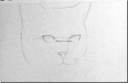 étapes pour dessiner un chat