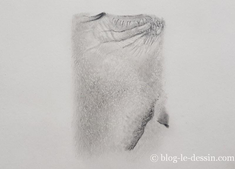 dessiner les micro-détails de la peau à la gomme
