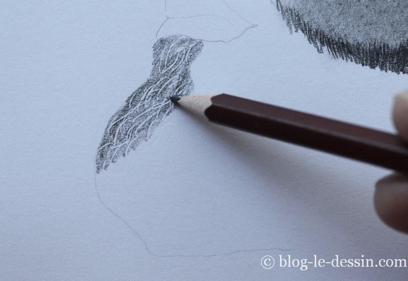 dessiner des poils