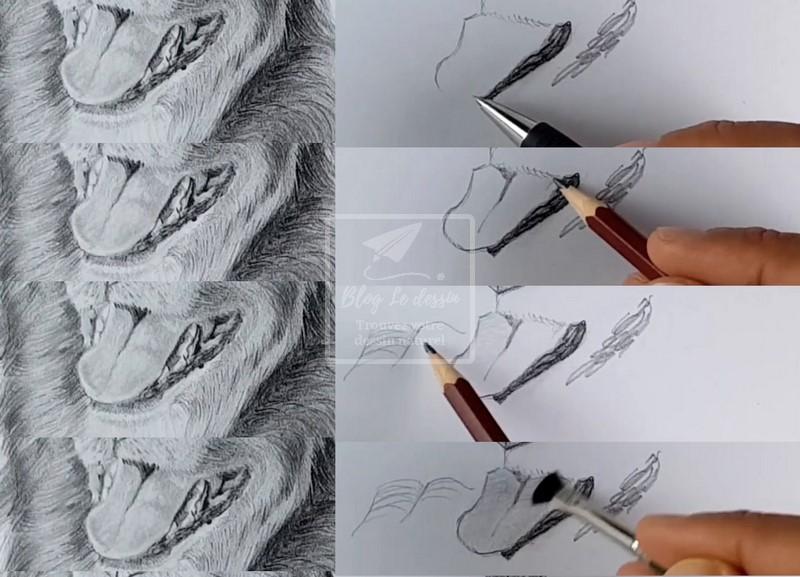 dessiner une langue de chien