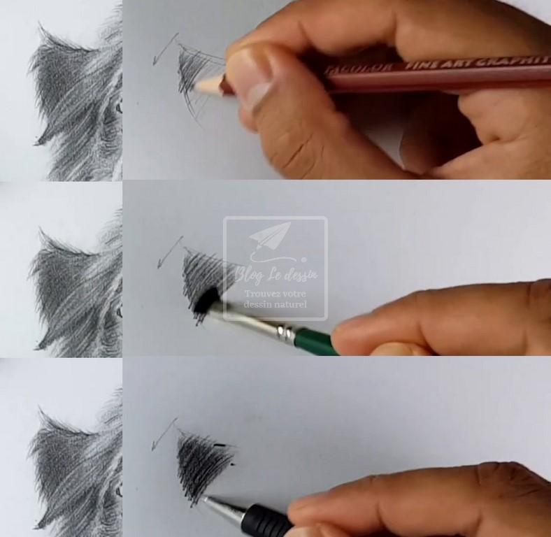 dessiner les poils d'un chien