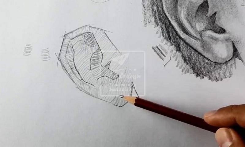 les lignes de surface pour donner du volume a un dessin