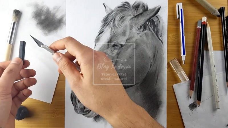dessin cheval fusain