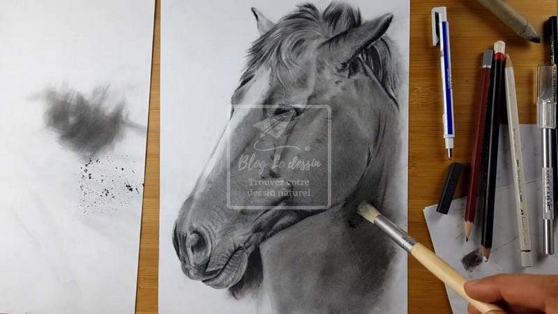 dessiner une tête de cheval réaliste