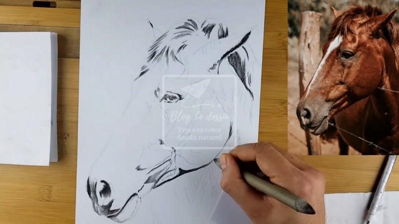apprendre à dessiner en valeurs de gris